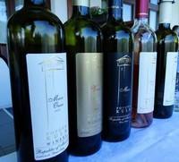 Дегустација на вино во Попова кула - Testing a wine in Popova kula